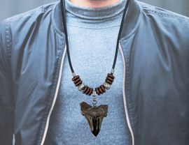 Megalodon Shark Tooth Pendant Necklace Jewelry Men