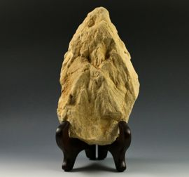 Large Shatter Cone Glover Bluff Wisconsin Dynamic Museum Grade