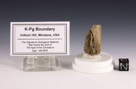 K-T Boundary or K-Pg Boundary Iridium Hill Montana