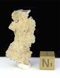 Authentic Lightning Sand Fulgurite Kalahari