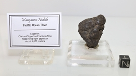 Polymetallic Manganese Nodule Clarion-Clipperton Fracture Zone NEW