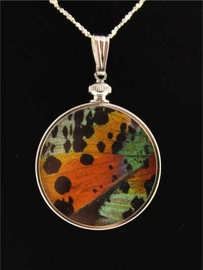Rainbow Butterfly Wing Jewelry Sterling Silver