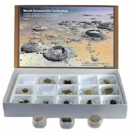 World Stromatolite Collection - New!