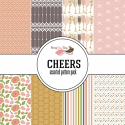 Cheers Assorted 12 x 12 Paper Pack
