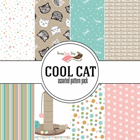 Cool Cat  Assorted 12 x 12 Paper Pack