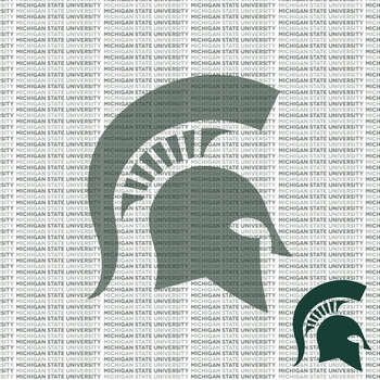 Fanatic: Michigan State University 12 x 12 Paper