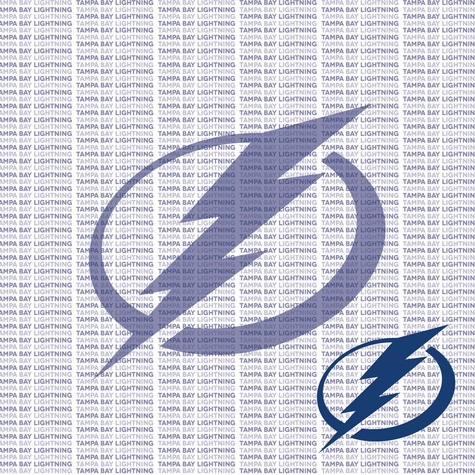 Fanatic: Tampa Bay Lightning 12 x 12 Paper