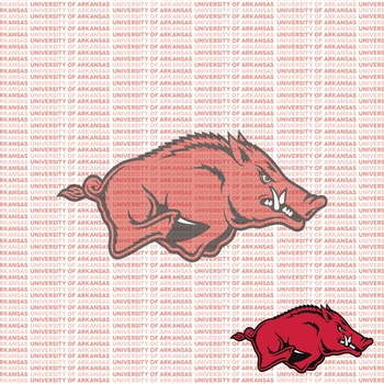 Fanatic: University of Arkansas 12 x 12 Paper