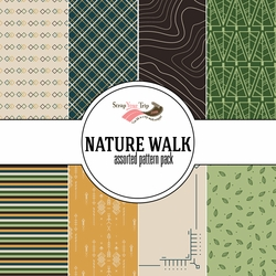 Nature Walk 12 x12 Assorted Paper Pack