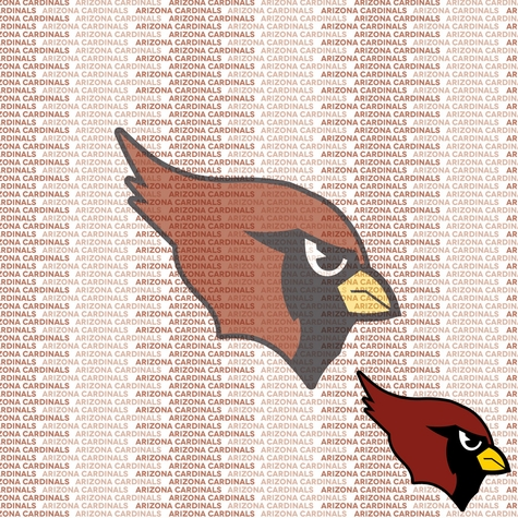 NFL Fanatic: Arizona Cardinals 12 x 12 Paper