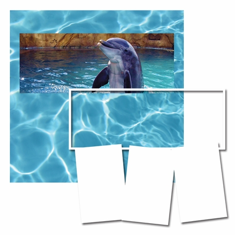 Panorama: Dolphin Frame Kit