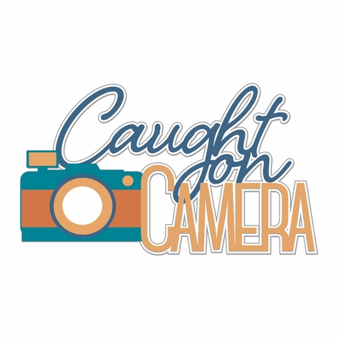 Picture Perfect: Caught On Camera Laser Die Cut