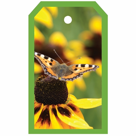 2SYT Tag-UR-It Butterfly Photo Tag
