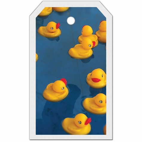 2SYT Tag-UR-It Rubber Ducky Blue Photo Tag