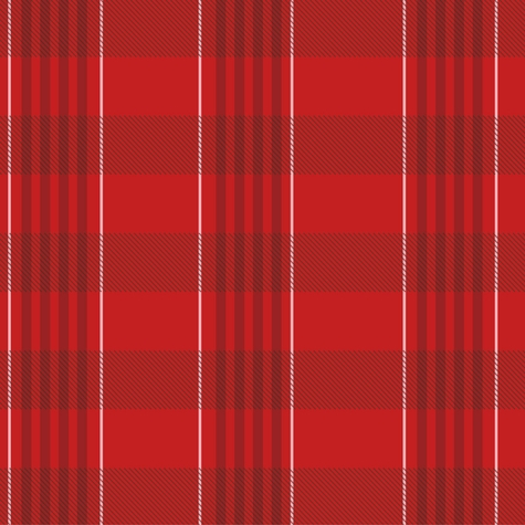 United Kingdom: Welsh Plaid 12 x 12 Paper
