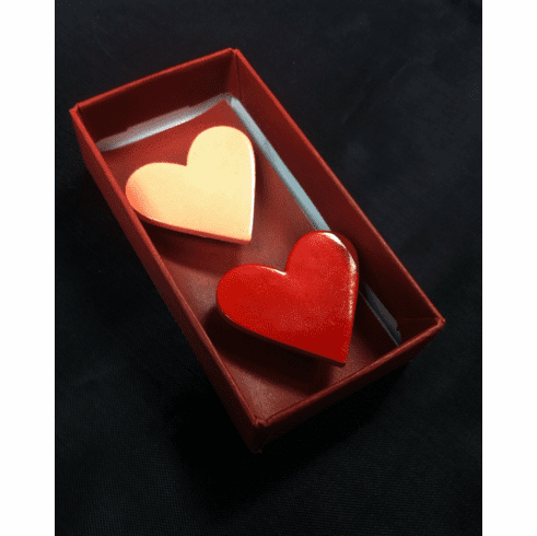 Two Heart Magnet Set