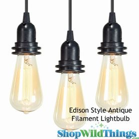 "SALE ! Antique ""Edison Style"" Lightbulb - Squirrel Cage Filament"
