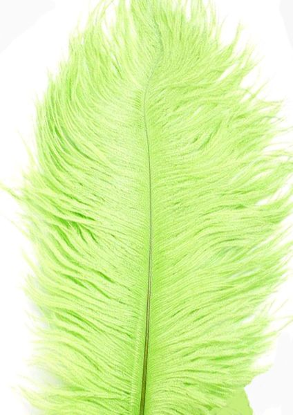"Apple / Lime Green Ostrich Feathers 29""-32"" - SPADS"