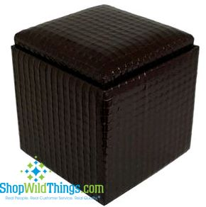 "CLEARANCE-Leather Ottoman with Storage - Black  Leather  17""x18"""