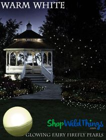 DazzLED Fairy Firefly Pearls - Warm White 12Pcs - Waterproof & Reusable
