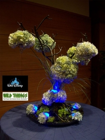 Disney Entertainment - Candle Trees in Action!