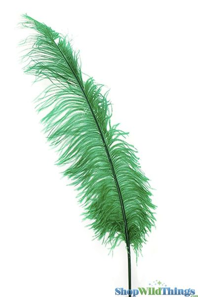 "SALE ! Emerald Green Ostrich Feathers - 22"" - 32"" SPADS"