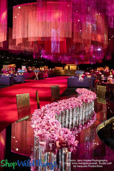 Emmy Awards Governor's Ball String Curtains & Crystals
