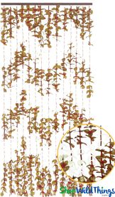"""FabuLush Fabric Flowers"" Curtain - Butterscotch and Ivory - 3' x 6'"