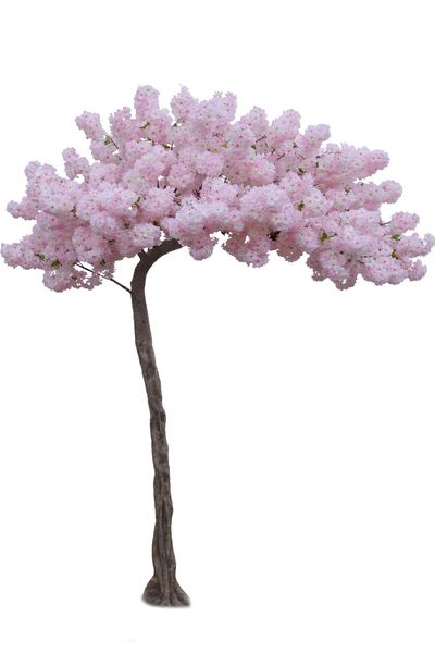 "Flowering Cherry Blossom - Pink & White � 10.5 Feet Tall x 8 Feet Wide ""Sideswept"" � Create Arch Using 2"