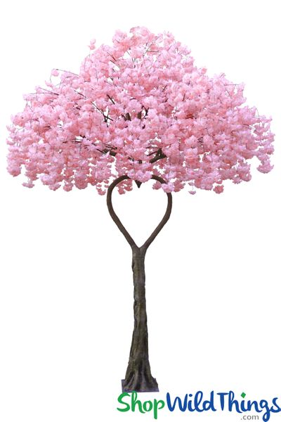 Flowering Dogwood Tree - Pink - Heart Shaped Trunk - 12 Feet Tall