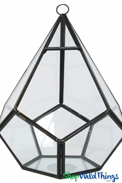 "Geometric Hanging or Tabletop Terrarium & Candle Holder - Black - 8"" Tall Dodecagon"