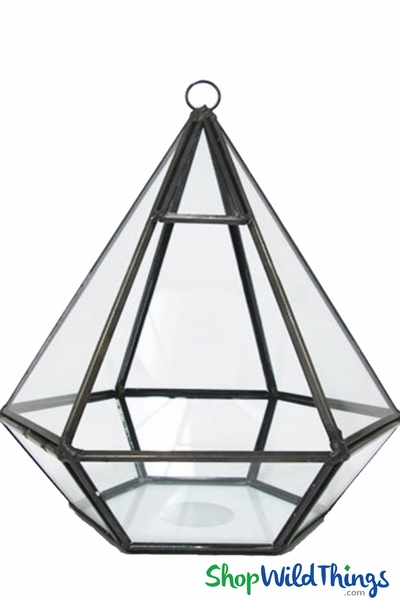 "Geometric Hanging or Tabletop Terrarium & Candle Holder - Black - 8"" Tall Hexagon"