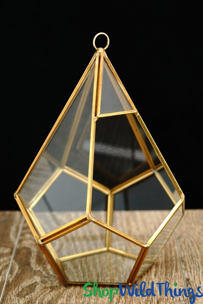 "COMING SOON! Geometric Hanging or Tabletop Terrarium & Candle Holder - Gold - 8"" Tall - Dodecagon"