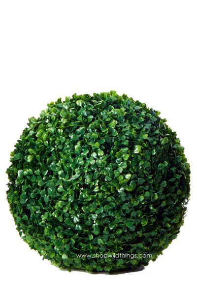 Kissing Ball Plant Topiary Boxwood - 14""