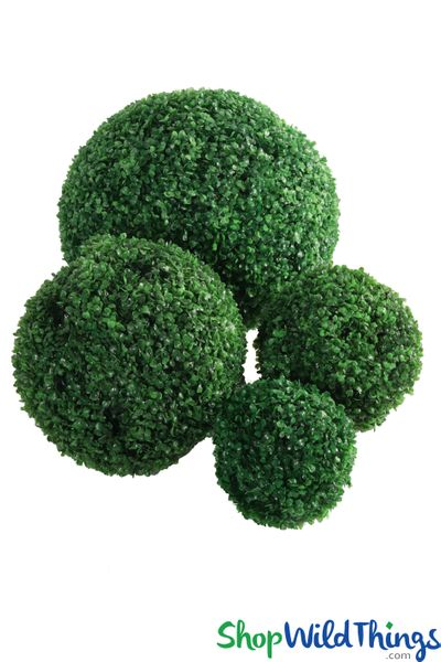 COMING SOON! Kissing Ball Plant Topiary Boxwood � Spring Green � 18""