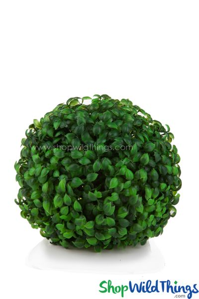 "Kissing Ball Plant Topiary Boxwood - 7"" - BUY MORE, SAVE MORE!"