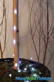 "LED Light Strand WHITE - Waterproof - 72"" Long - Battery Operated - 19 Lights"