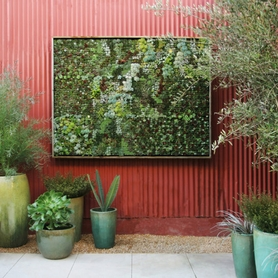 Make Your Outdoor Space Gorgeous ~ Just in Time for Fall