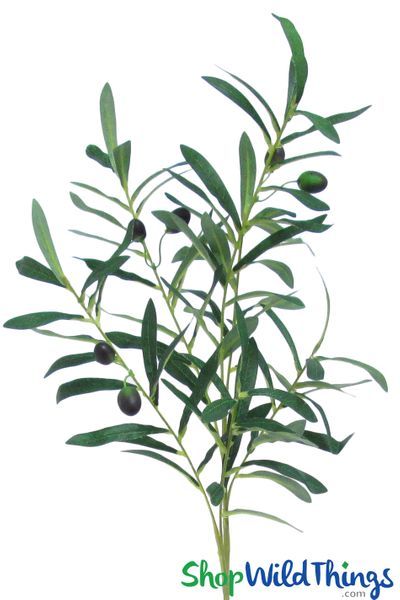 """Olive Branch Spray With Fruit _ 36"""" Bendable Greenery Branch"""