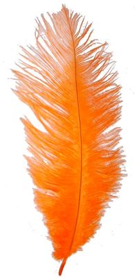 Orange Ostrich Feathers Feathers For Eiffel Towers Vases