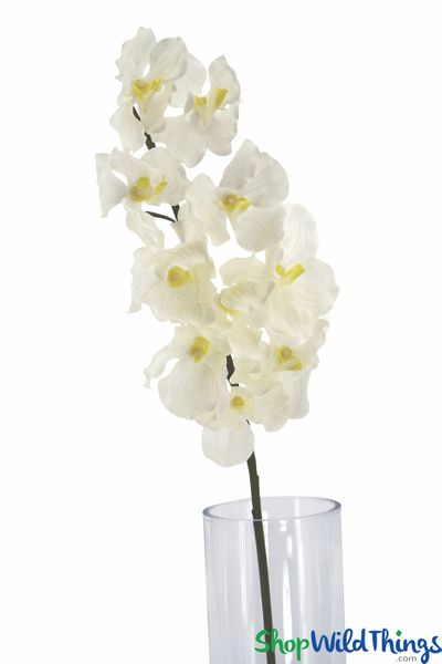 "Vanda Orchid Floral Spray - Real Feel - Ivory 38"" - 5"" Wide Blooms"