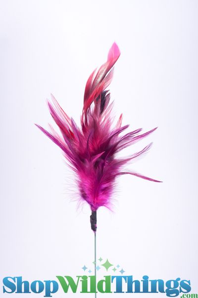 Peacock Feathers on a Stick - Fuchsia Pink