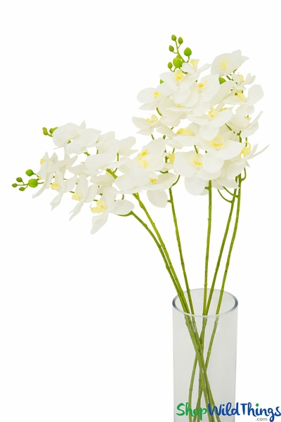 "Phala Orchid Floral Spray - Real Feel - Off White 40"" (4"" Wide Blooms)"