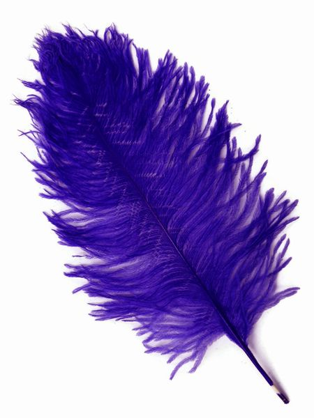 "COMING SOON! Purple Ostrich Feathers 13"" - 15"" - SPADS"