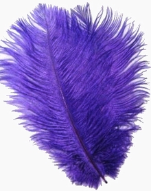 """Purple Ostrich Feathers 29""""-32""""- SPADS"""