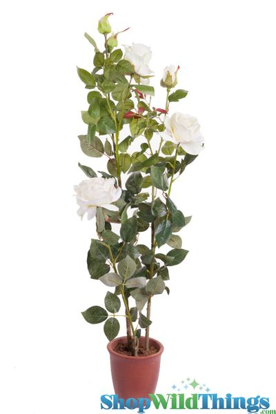 "SALE! Rose Bush in Ceramic Pot - Lifesize 43""H Cream/Yellow - High Quality Silk Roses"