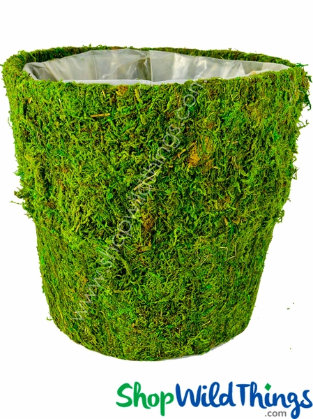 "SALE ! Round Moss Covered Pot w/Liner, 9.5"" High"