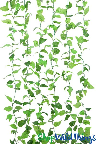 Devil's Ivy Silk Garland - Green Pothos - 78'