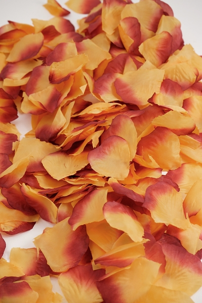Silk Rose Petals - Burgundy Two Toned- Bag of 400 pcs