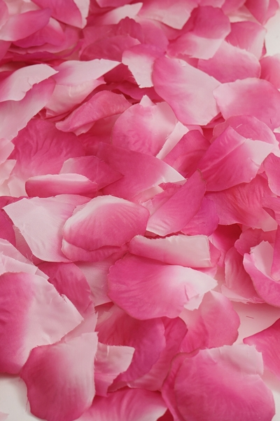 Silk Rose Petals - Fuchsia Two Toned- Bag of 400 pcs